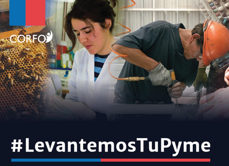 Catastro de MiPymes afectadas en todo Chile
