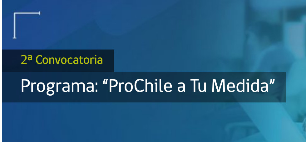 """Programa """"ProChile a Tu Medida"""""""